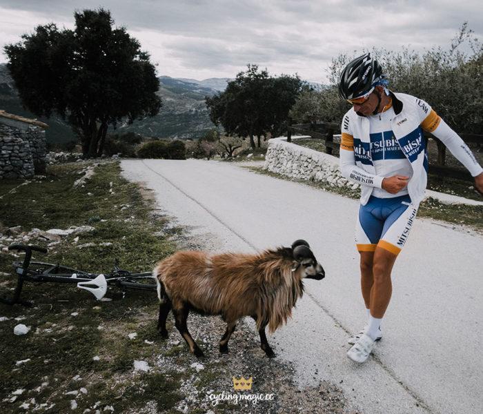 Calpe – spotkanie z kozami na szczycie